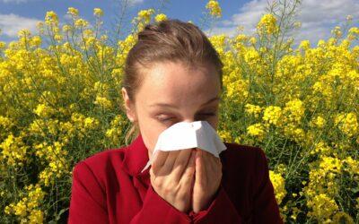 Lutter contre les allergies saisonnières